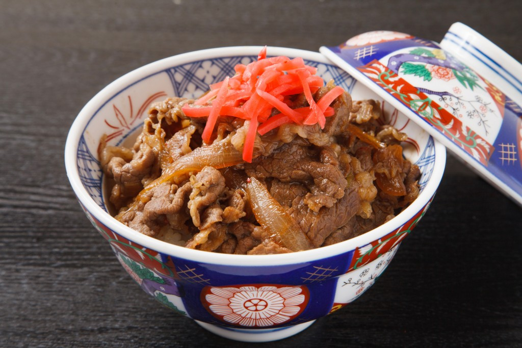 japanese food, gyudon
