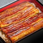 Japanese Food  100 –  #20  Unaju